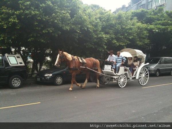 6/6我才出家門就看到一輛馬車出現在我眼前.是王子來接我的嗎?