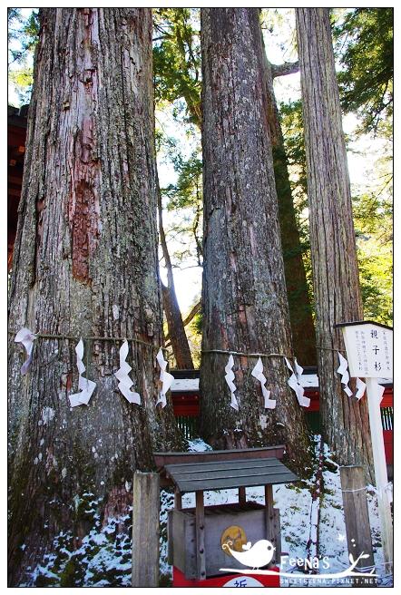 二荒山神社 (5)_nEO_IMG