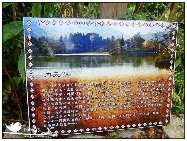 向天湖和東河 (2)