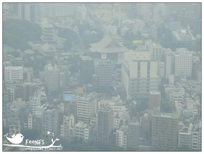 tokyo (7)_nEO_IMG.jpg