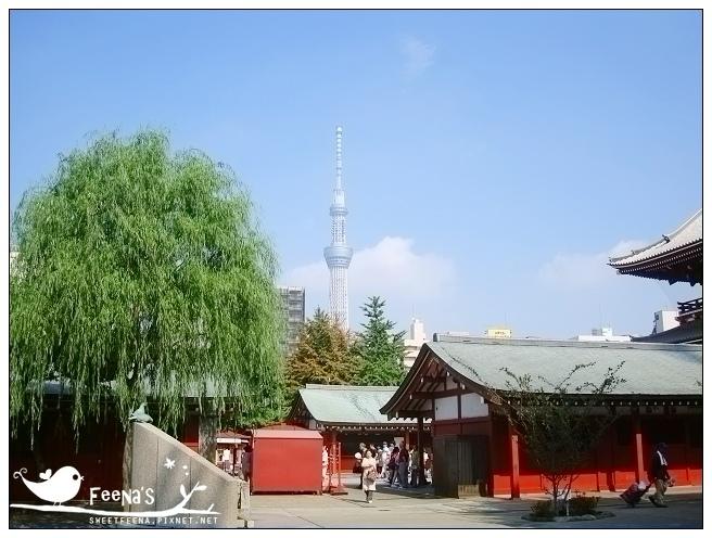 tokyo (28)_nEO_IMG.jpg