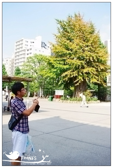 tokyo (29)_nEO_IMG.jpg