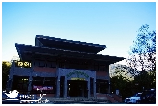 拉拉山神木區_nEO_IMG.jpg