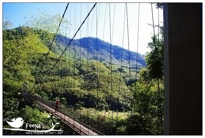 拉拉山神木區 (13)_nEO_IMG.jpg