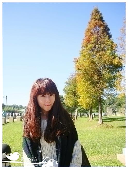 慈湖、大溪花海 (11)_nEO_IMG.jpg