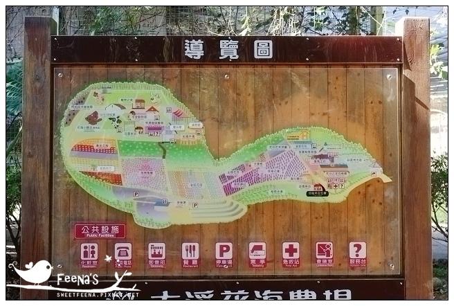 慈湖、大溪花海 (12)_nEO_IMG.jpg