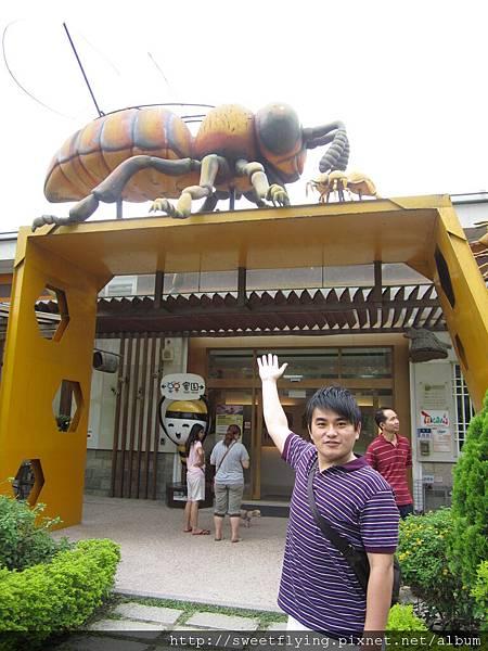好大隻的大黃蜂