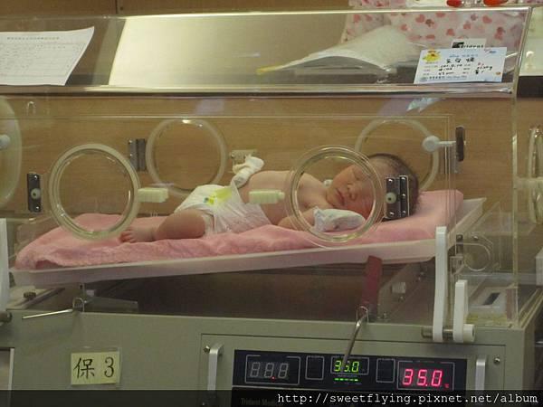 小王子出生了