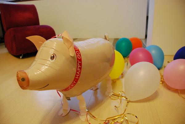 可愛的小豬,氣球才放一天就沒氣嚕