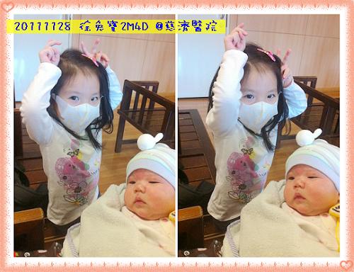 徐兔寶2m4d-1.jpg