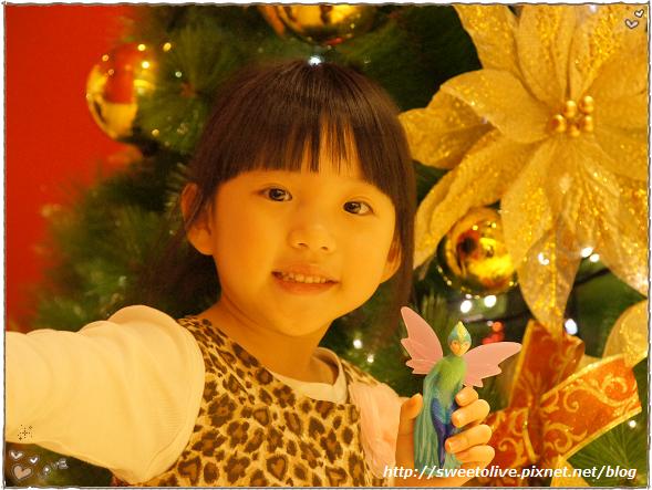 20121215 信義區看聖誕樹-1