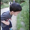 nEO_IMG_DSC07869