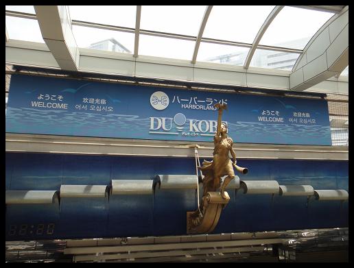 DSC08568