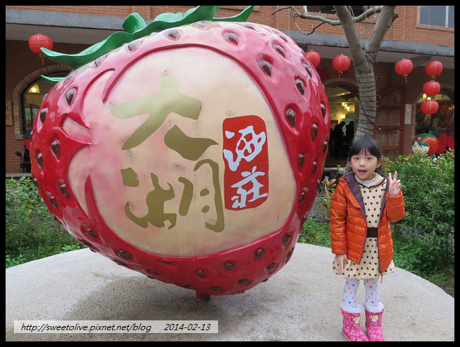 20140213 大湖採草莓 南投賞花燈-1