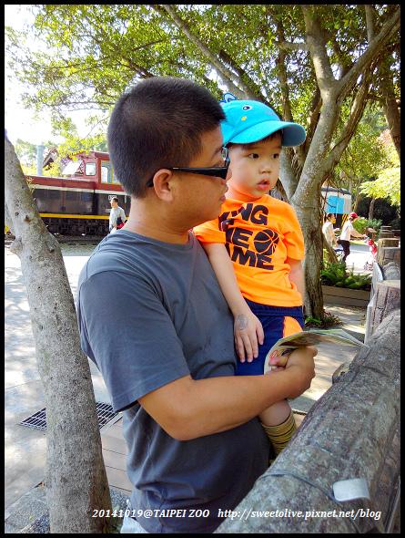 20141019 taipei zoo-3