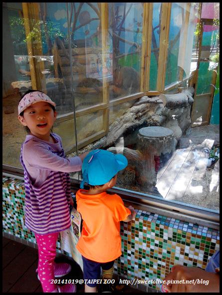 20141019 taipei zoo-4