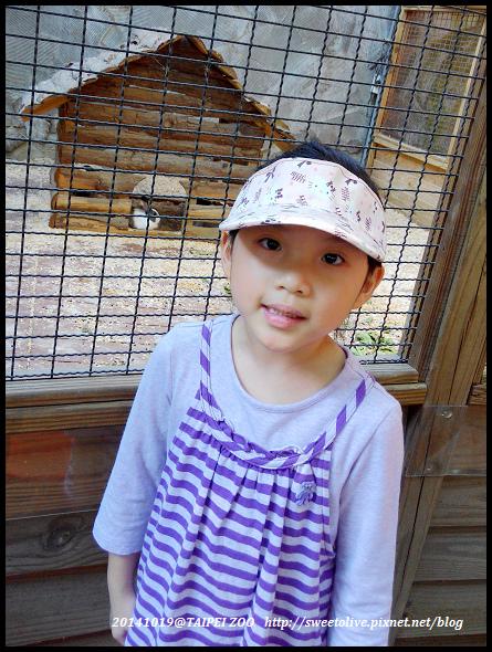 20141019 taipei zoo-6