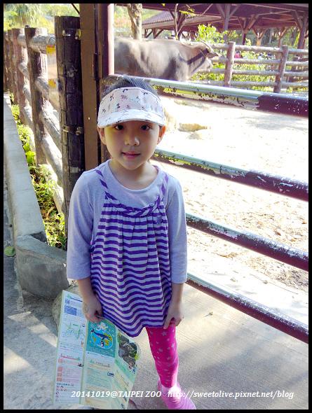 20141019 taipei zoo-11