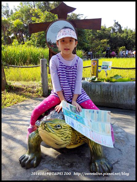 20141019 taipei zoo-13