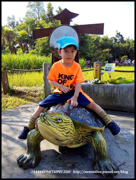 20141019 taipei zoo-14