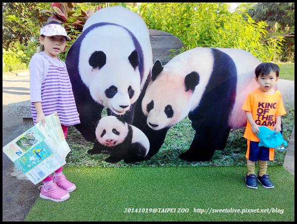 20141019 taipei zoo-15