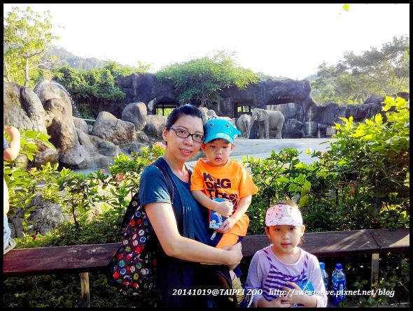 20141019 taipei zoo-16