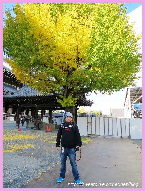 20141202 japan family trip-13.jpg