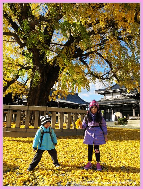 20141202 japan family trip-30.jpg