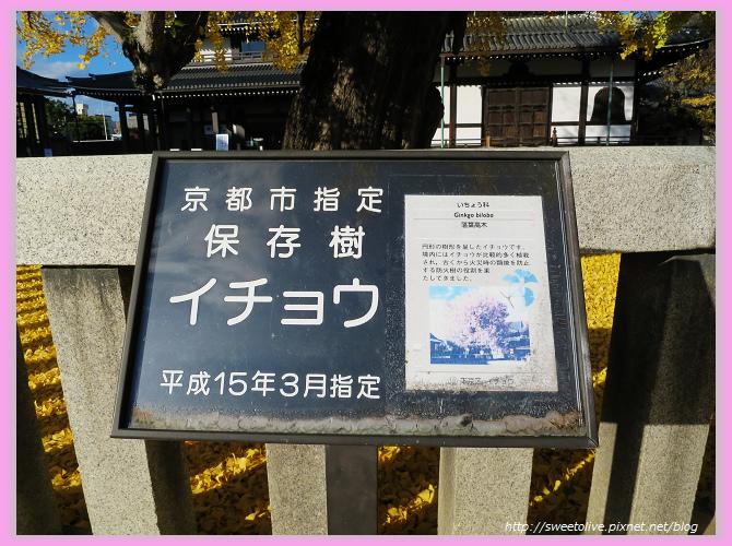 20141202 japan family trip-32.jpg