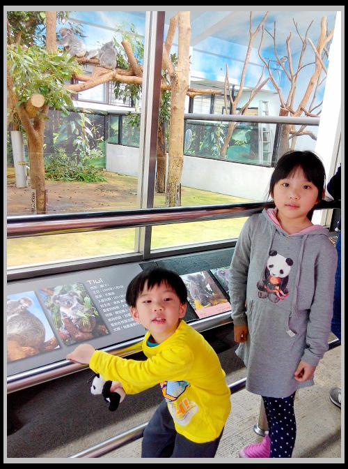 20150225 動物園 貓空纜車-3.jpg