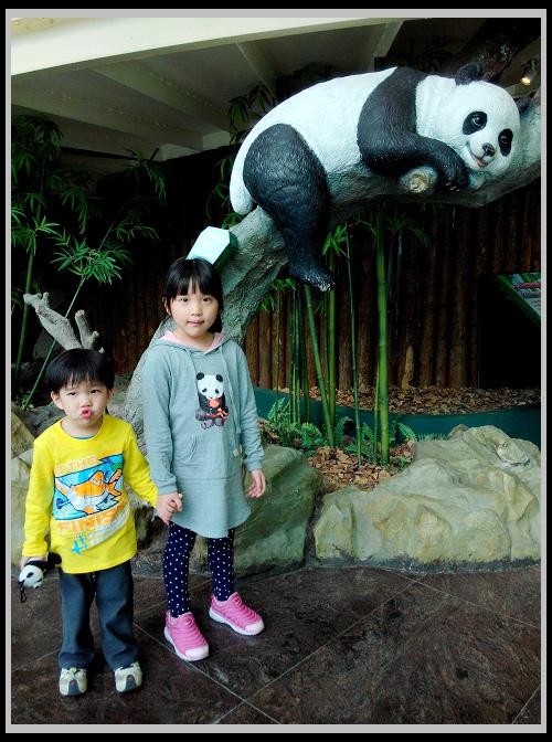 20150225 動物園 貓空纜車-6.jpg