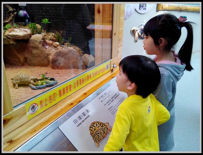 20150225 動物園 貓空纜車-11.jpg