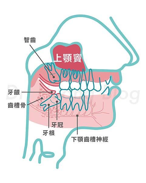 181016_全口圖_mod3-01.jpg