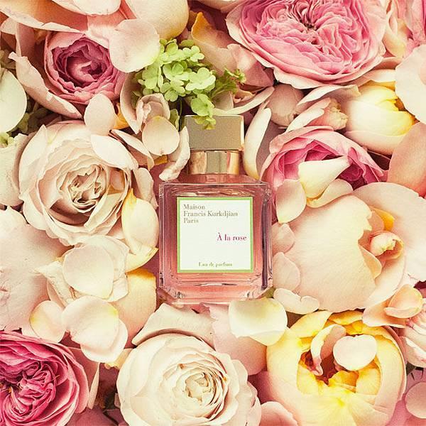 a-la-rose.jpg