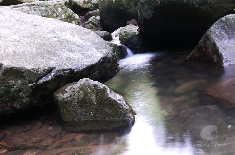 外雙溪生態遊12.jpg