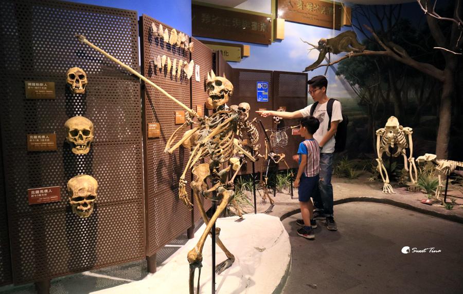 樹谷生活科學館