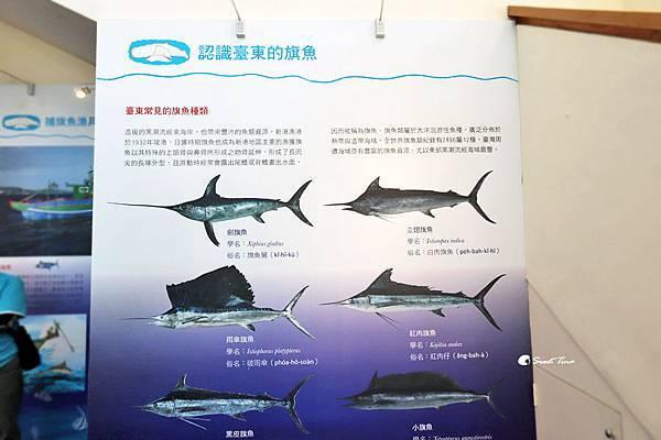 成功海洋環境教室
