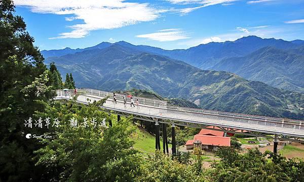 清境高空觀景步道 | 青青草原