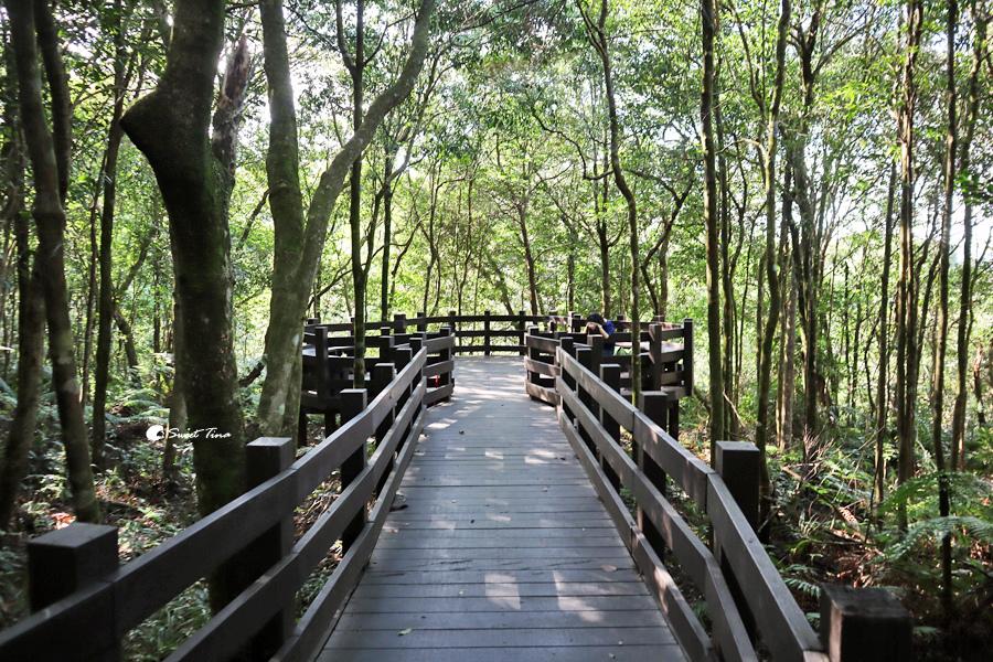 小溪頭環狀步道