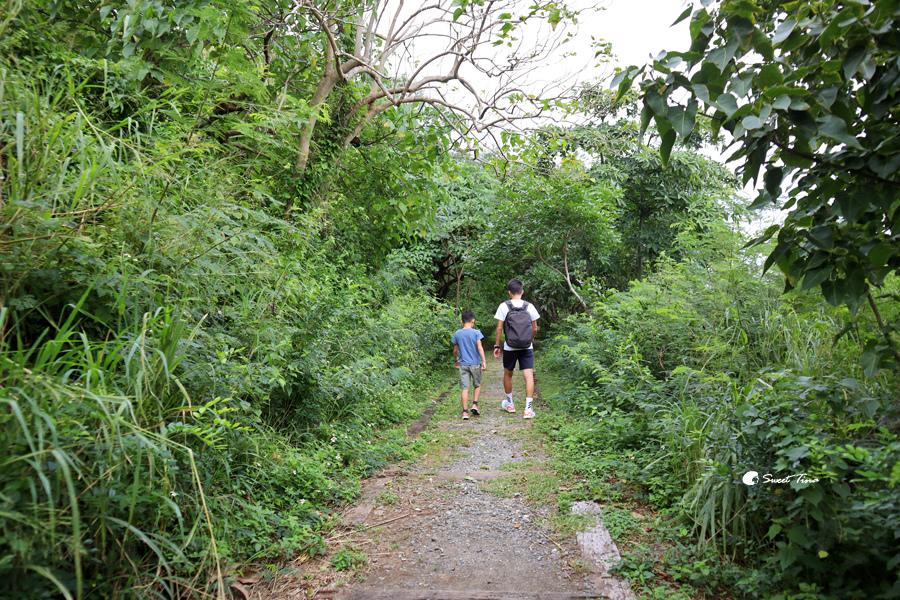 大武國家森林步道