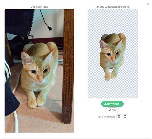 用人工智慧幫家裏貓貓去背 <3 五秒鐘ok!