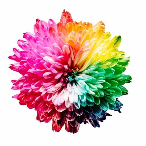 UI設計色彩的魔力,色彩心理學非常重要!來看看大師怎麼說!