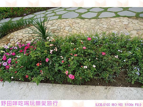 DSC00320P31.jpg