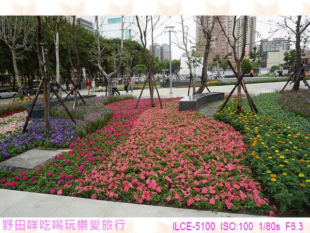 DSC00394P70.jpg