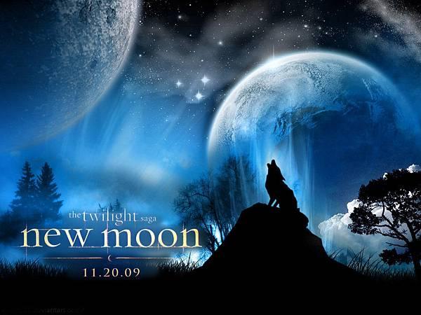 The-Twilight-saga-New-Moon-twilight-series-4882955-1024-768.jpg