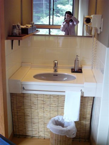 船山温泉の部屋