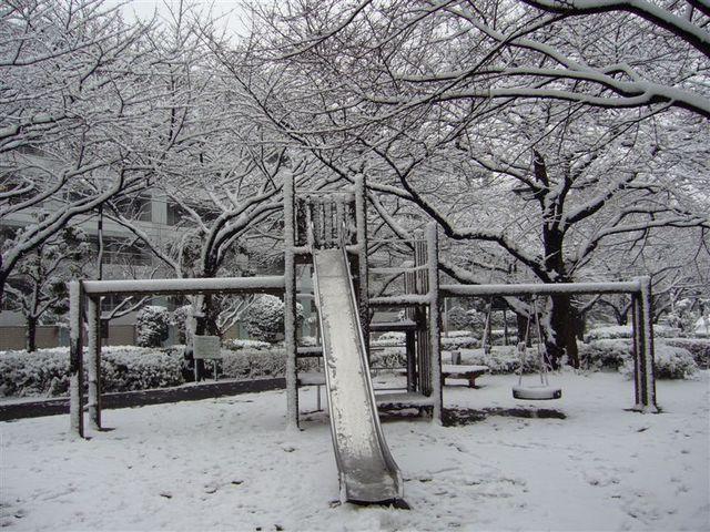 snow 036.jpg