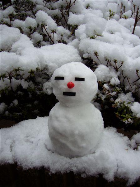 snow 053.jpg