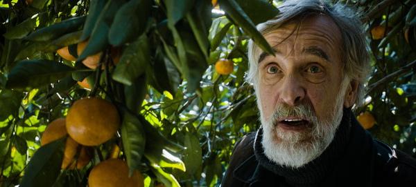 奧斯卡、金球雙雙提名《橘子收成時》創爛番茄100%滿分好評