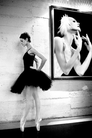 《天鵝湖畔的芭蕾伶娜》主角簡介